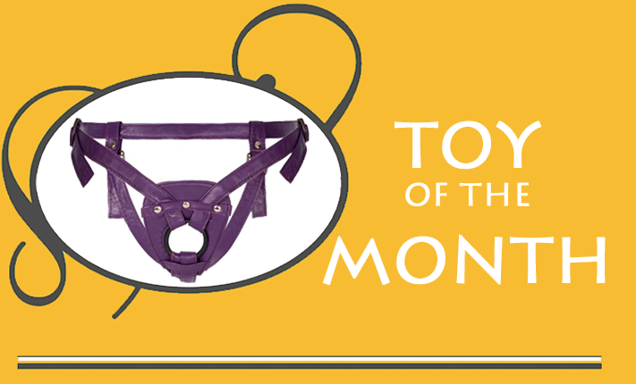 Toy of the Month: Sh! Harness